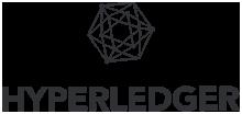 HyperLedger Blockchain Development Company